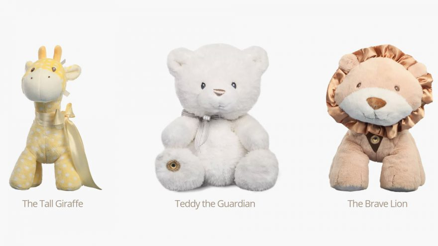 Teddy the Guardian : Personal fuzzy guard with special powers